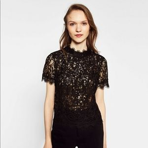 Zara Trafaluc Embroidered Lace Top in Black